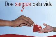 Doação de Sangue 05