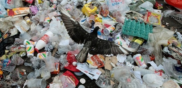 lixo-acumulado-e-visto-nas-ruas-do-complexo-do-alemao-na-zona-norte-do-rio-que-foi-ocupado-ontem-domingo-28-pela-policia-1291033808548_615x300