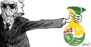 Copa 2014 05